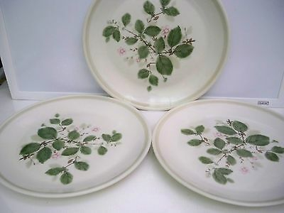 3 Royal Albert Dinner Plates  ''Rose Arbour'' Country Garden 10 1/4 Inches