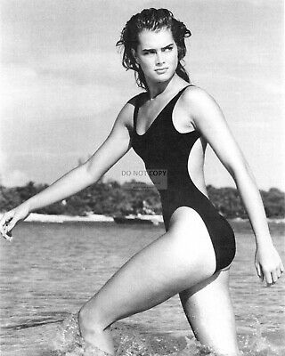 Brooke Shields Actress And Model Pin Up - 8X10 Photo (Rt903)
