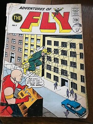 Adventures Of The Fly