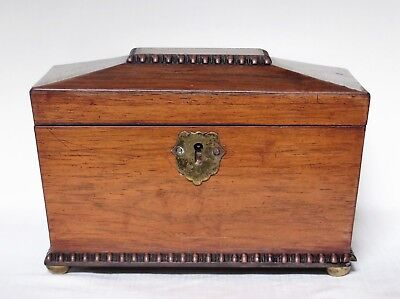 Antique English Rosewood Sarcophagus Tea Caddy