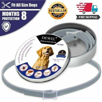 Bayer Seresto Foresto Dogs Cats Flea and Tick Collar Protection Adjustable Size