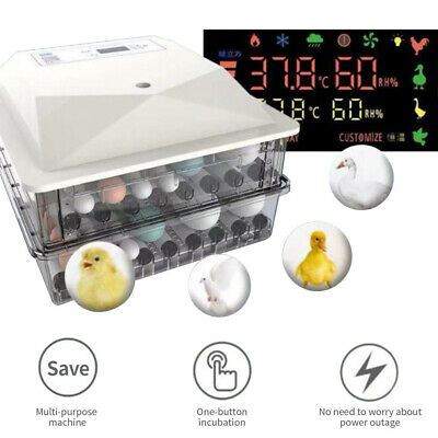 56 Eggs Automatic Incubator Hatcher Digital Display Automatic Turning Chicken