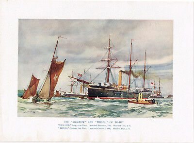 "The ""Swallow"" & ""Thrush"" Of Today 1901 Antique Nautical Picture Print 1901"