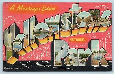 Postcard WY Large Letter Greetings From Yellowstone Park Wyoming Linen P11