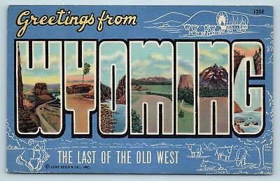 Postcard WY Large Letter Greetings From Wyoming Vintage Linen #2 P11