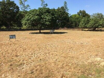 Land/Property For Sale In Philippines - 7800 Sqm - Price Negotiable