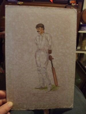 Rare - Old Cricket Watercolour Of A Victorian Cricketer Signed Astor