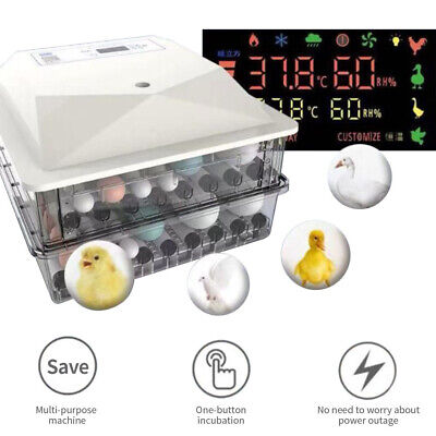Incubator 56 Eggs Automatic Hatcher Digital Auto-turning Temperature Control