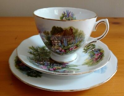 Royal Vale Bone China Trio Cup Saucer Plate Pattern 7382