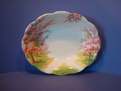 Royal Albert Blossom Time Pattern, Oval Open Serving Dish