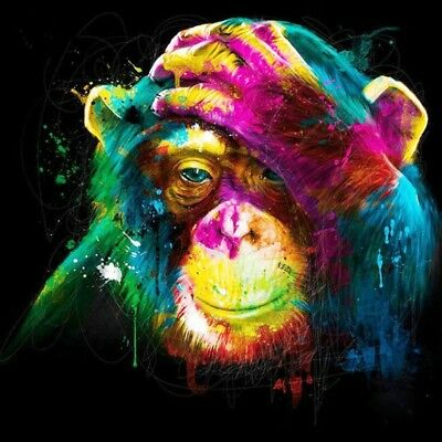 "Monkey Canvas Print  20""x20"""