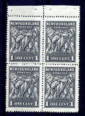 Newfoundland 184b VF MNH booklet pane of 4, 1c grey black, perf 14 CV $135