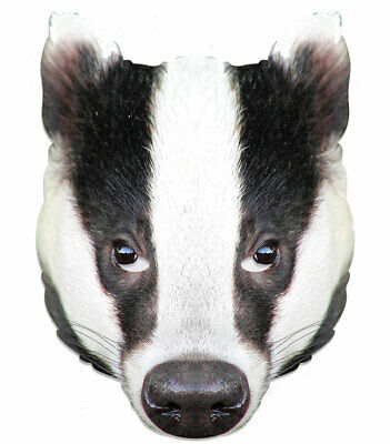 Badger Animal Single 2D Card Party Face Mask - World Book Day Fancy Dress Up