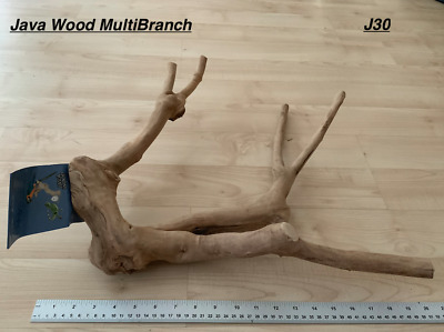 Java Wood Multibranch Perch Suitable For Medium & Large Birds and Parrots - J30