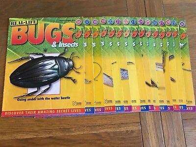 National Geographic Real Life Bugs And Insects Magazines ONLY 16-30