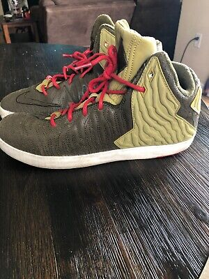 best website 0d49e da804 NIKE Mens 10M LeBron James XI NSW Lifestyle Dark Loden Hi Top Shoes 616766  300