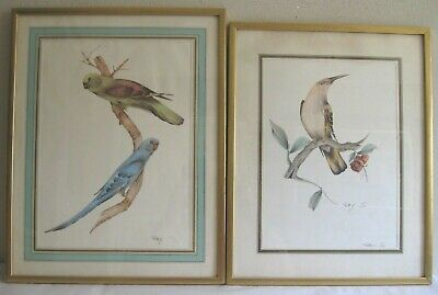 2 Hand Colored Bird Prints Hand Signed  Patty S.Framed