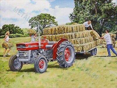 Massey Ferguson 135 Tractor - Poster (A3) - (3 for 2 offer)