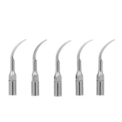 10 Pcs P1 Dental Ultrasonic Scaler Handpiece Scaling Tips Handpiece Fit for N2K7