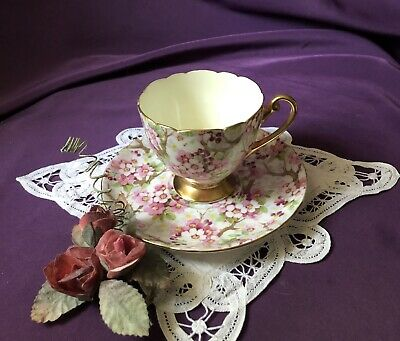~Very Rare! ~ English ~'~ Shelley ~'~ Maytime Chintz ~ Footed Tea Cup & Saucer~