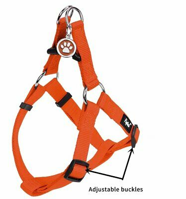 Pupteck No Pull Adjustable Basic Nylon Step In Puppy Vest Dog Harness - Small