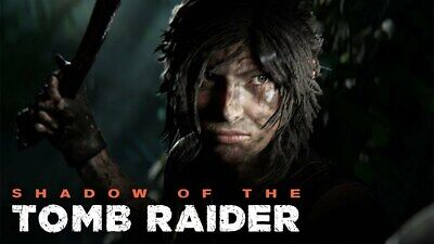 SHADOW of the TOMB RAIDER PC Steam Offline Account