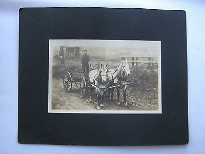 Horse Drawn Wagon Wooden Wheeled Buggy Workhorses Cabinet Card Photo Apollo PA?