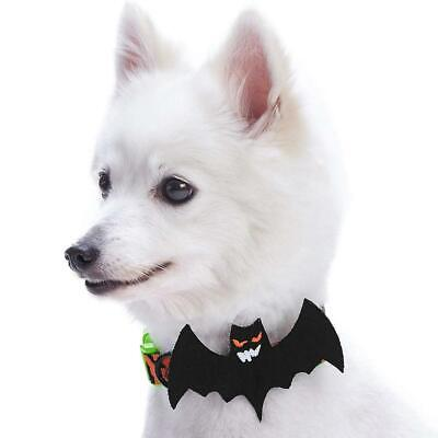 Blueberry Pet Halloween Mystery Disguise Classic Designer Dog Collar with...