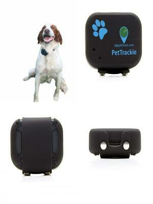 PetTrackie is a Tough, 100% Waterproof GPS Pet Tracker with Live Location...
