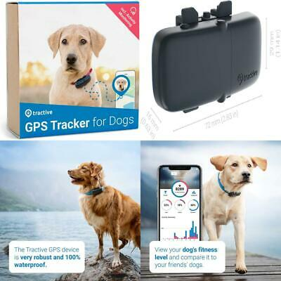 Tractive DOG GPS Tracker With Activity Monitoring - Lightweight And Activity