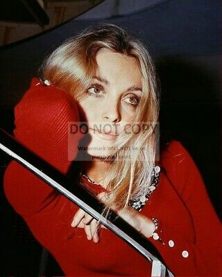Actress Sharon Tate - 8X10 Publicity Photo (Rt987)