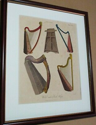 Musical Instruments. 1818. Harps. (Antique print)