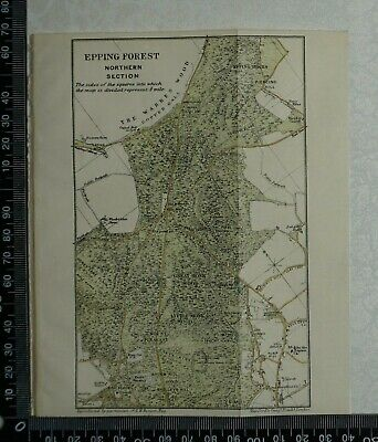 1920 Vintage Blue Guide Map of Epping Forest - Northern Section - by Stanford