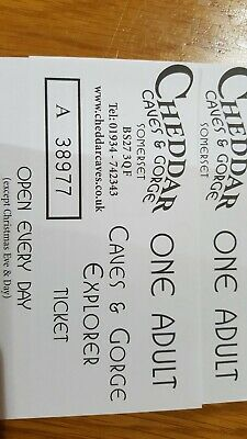 Cheddar Caves&George Day Ticket £RRP £19.95