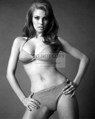 Raquel Welch Actress And Sex-Symbol Pin Up - 8X10 Publicity Photo (Ww065)