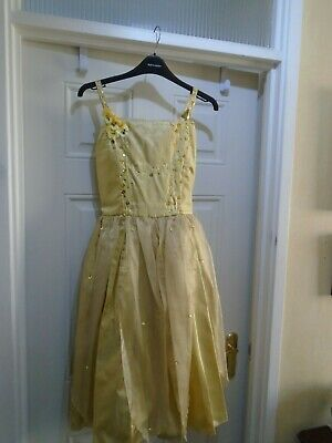 Pantomime Fairy  dress, sleeping beauty  show small size