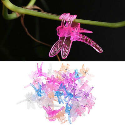 30PC Dragonfly Orchid Clips Grower Support Garden Plant Flower Vine Support Clip