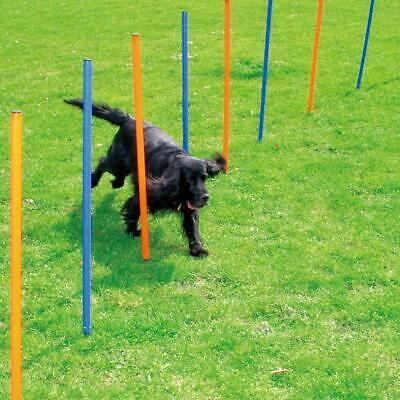 Pawise Pet Dogs Outdoor Games Agility Exercise Training Equipment Starter...