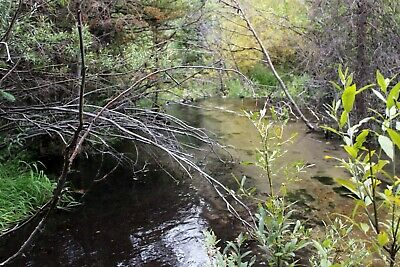 Montana Gold Mining Claim Thief Creek Placer Mine Nugget Sluice Snipe Placer MT