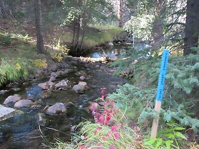 Montana Gold Mine Prime Mining on Thief Creek 20 Acre Placer Claim MT Panning