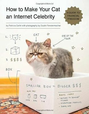 How To Make Your Cat An Internet Celebrity by Patricia Carlin (Paperback, 2014)
