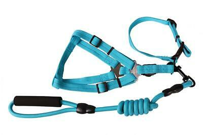 Easy Walk Dog Harness Pet Collars Halter Lead 4 Feet Long for Greater...
