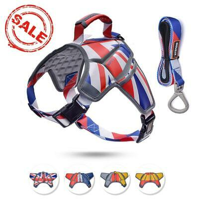 QQPETS Personalized Dog Harness set with a Matching Lead,Breathable Massage...