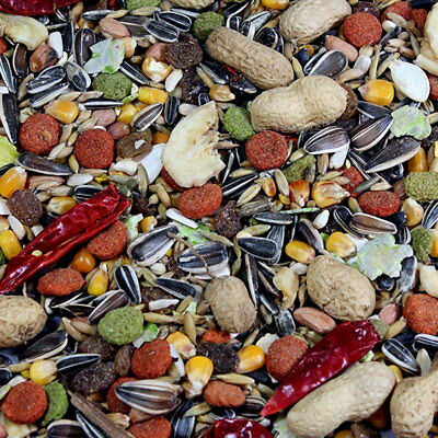 Best Pets Tropical Parrot Bird Seed Feed Food