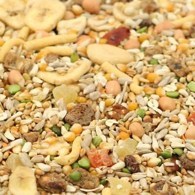 Tidymix Parrot Diet 3kg High Quality Seed Blend Bird Food AFRICAN GREY MACAW