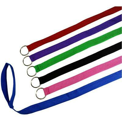 Downtown Pet Supply 6 Foot (1.82m) Slip Lead, Leads, Kennel Leads with O...