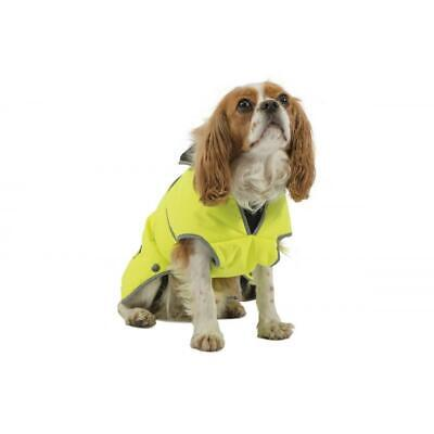 Ancol Muddy Paws Storm guard Dog Coat, X-Large, Hi-Vis Yellow, X-Large