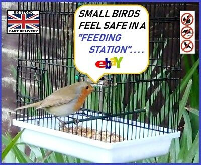 STARLING PROOF ! Wild Bird Feeder Station (Blue Tits/Robins & Sparrows )