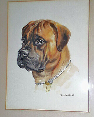 Original Signed 1940s US Artist Charles Liedl Butch The Boxer Watercolor Portrai