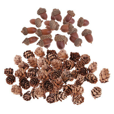 40 Small Natural Dried Pine Cones Dried Acorn Flowers for Christmas DecorS